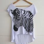 Inspiração: Zebra