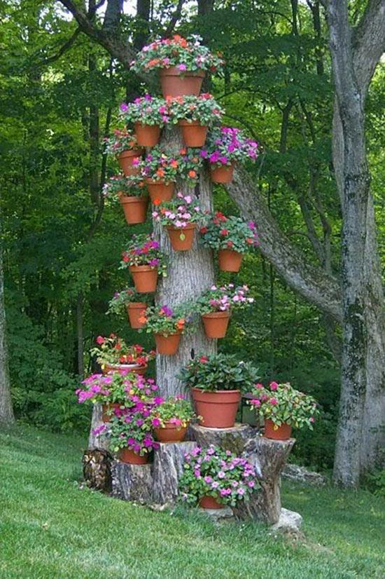 mini jardim reciclado:Crie vasos reciclados para o jardim