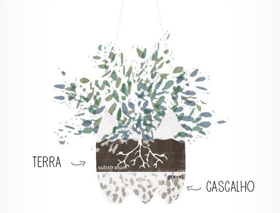 Como plantar no vasinho