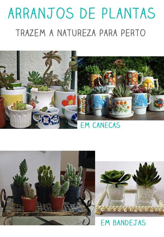 plantas na decoração do apartamento