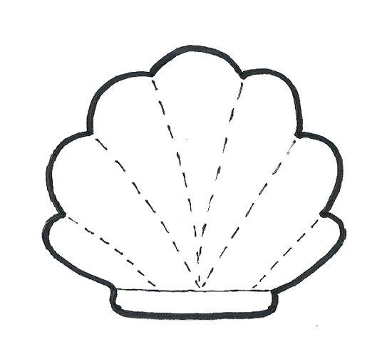 Molde concha