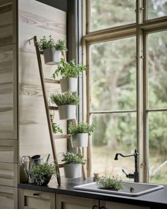 Horta de temperos dentro da cozinha: ideias diferentes e criativas