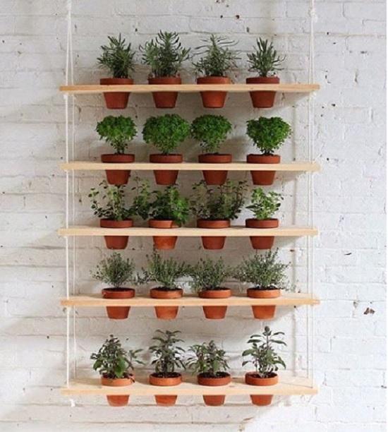 Como fazer horta de temperos dentro da cozinha: ideias diferentes e criativas